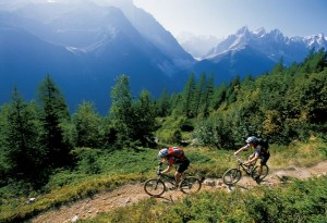 Mountain Singletrack
