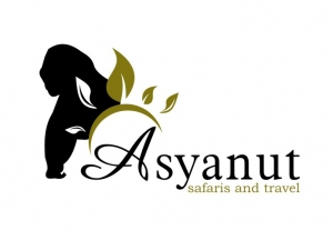 Asyanut Tours & Travel