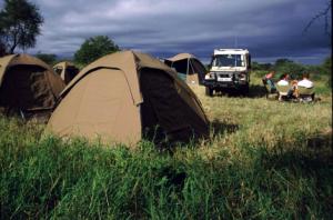 Mobile Camping in Porini