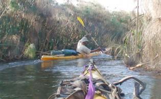 Kayaking-Botswana-151