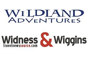 Logo 300dpi-wildland-only-blue copy