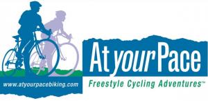 AYP logo 2