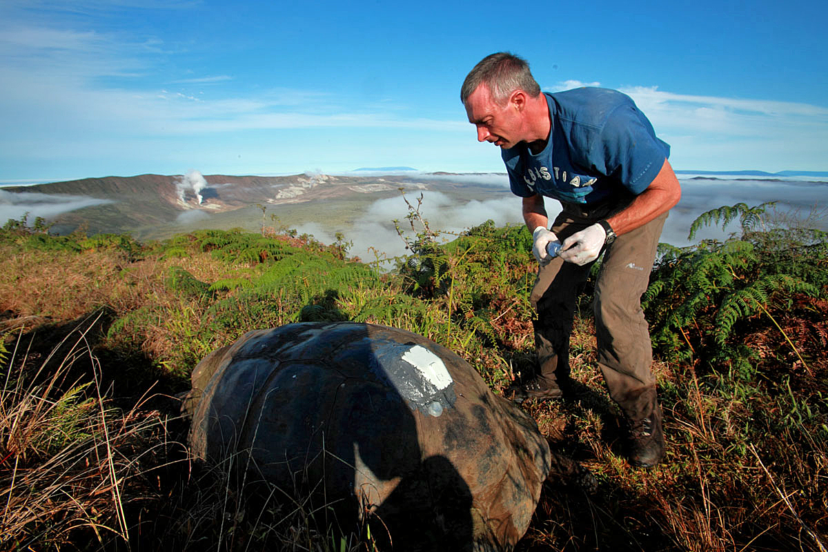 The International Galapagos Tour Operators Association Raises More Than 750