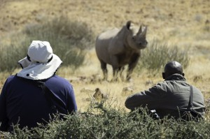 Desert_Rhino_Camp_2014-08-96