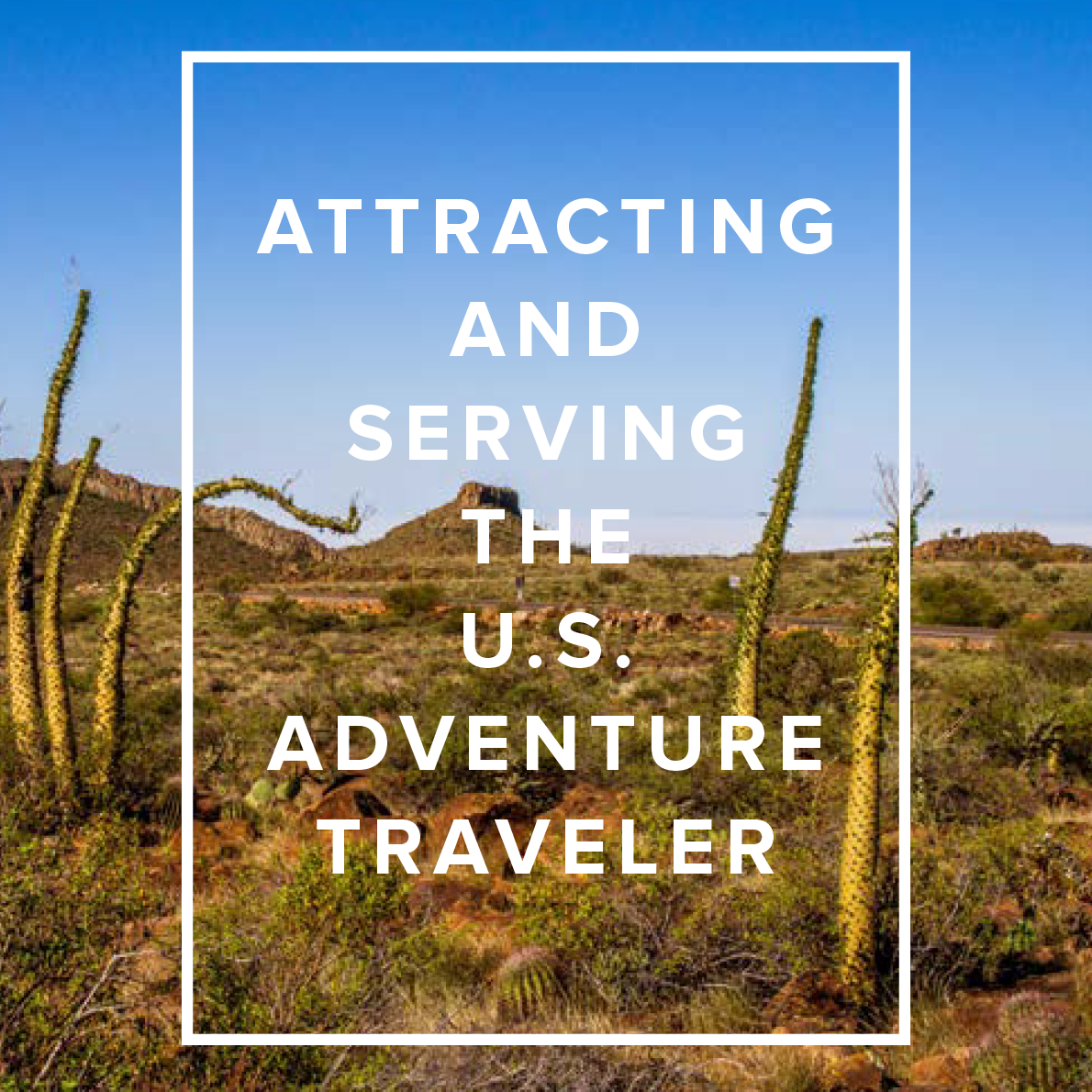 Adventure Travel: Attracting And Serving The U.S. Adventure Traveler: New