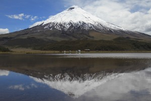 AR-IT-ANDES10-096
