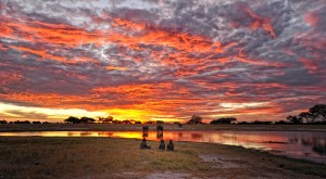 sunset-in-Hwange-national-park