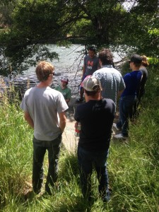 In the field / Guide training Pandion conducted for River Drifters (rafting company) – Maupin, OR