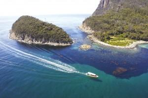 Passing Penguin Island - Bruny Island Cruise  - credit Tourism Tasmania & Joe Shemesh