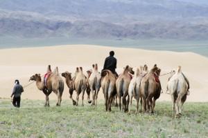 Mongolia_Sasha Lehman, Absolute Travel