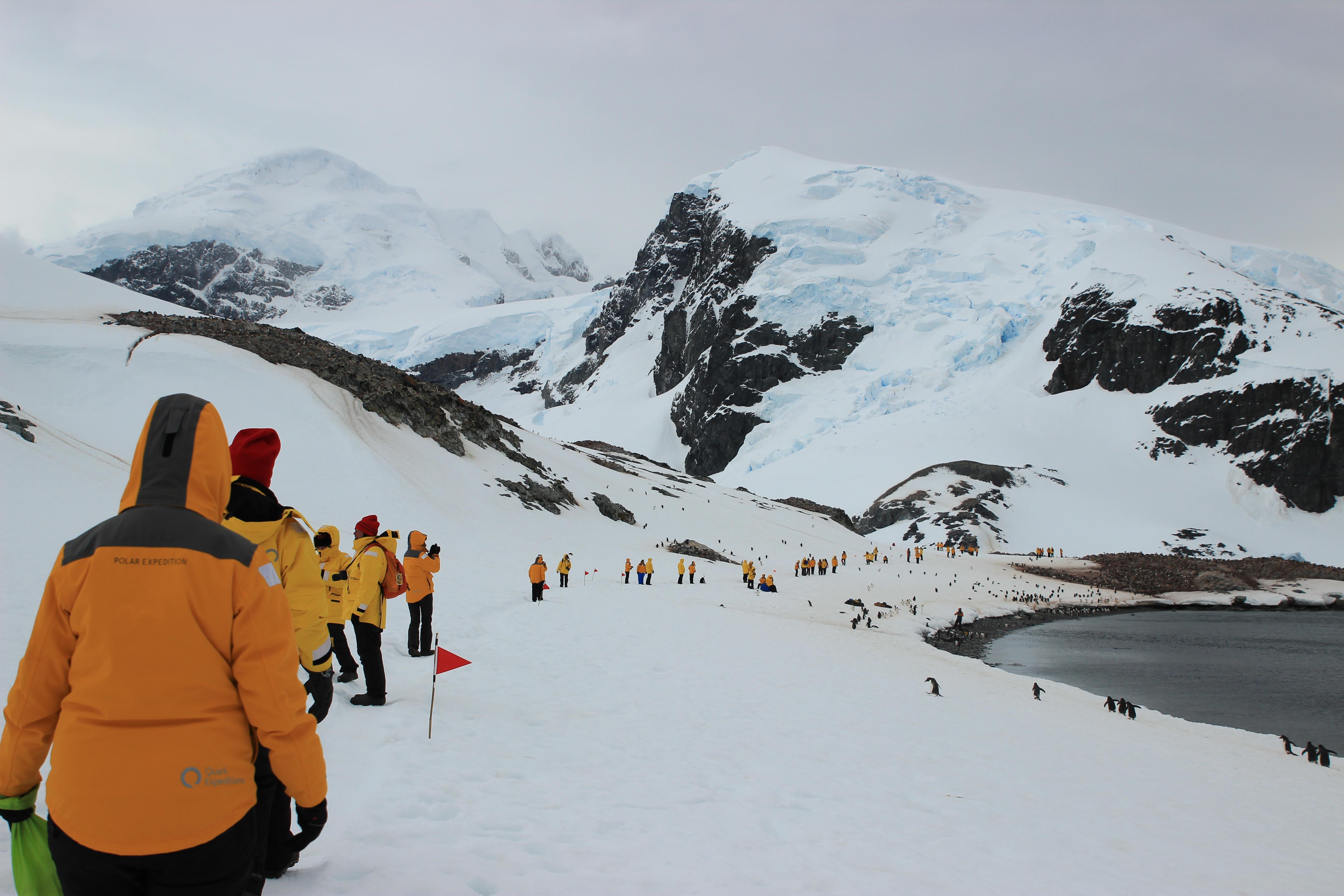Quark Expeditions Wins Gold Magellan Award For Antarctica
