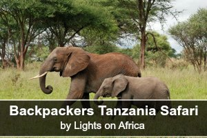 2lights-on-africa-millenials-7468562080_tarangire_2012_05_28_1776_backpackers_tanzania_safaris_lights_on_africa_safaris_original