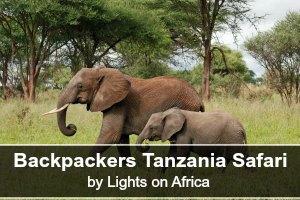 2lights-on-africa-millenials-7468562080_tarangire_2012_05_28_1776_backpackers_tanzania_safaris_lights_on_africa_safaris_original