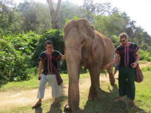 thailand_chiang-mai_elephant-carers