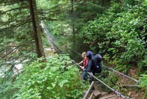 Visitors hiking the temperate rainforest of the West Coast Trail cross suspended bridge.  /  Des visiteurs traversent un pont dans la forêt pluviale tempérée, sur le sentier de la Côte-Ouest.
