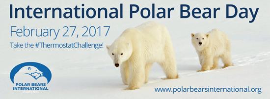 pola-bear-day