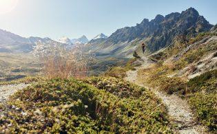 Schweiz. ganz natuerlich.                                  Mountainbiken im Val d'Aniviers bei St-Luc, VS. (Fahrer: Tim Beatrix)
