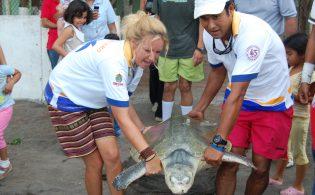 fundacion-yepez-conservacion-tortugas-marinas-7