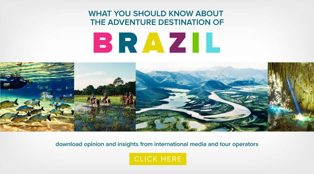 Research: A Trove of Life and Diversity, Brazil Beckons Adventurers